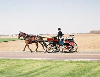 chiste: el caballo y las riendas