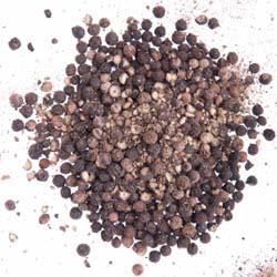 hormigas remedios