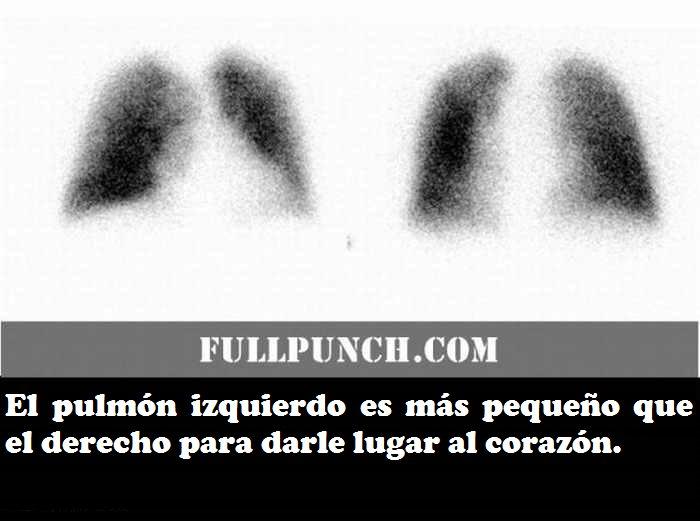 Fotos Salud
