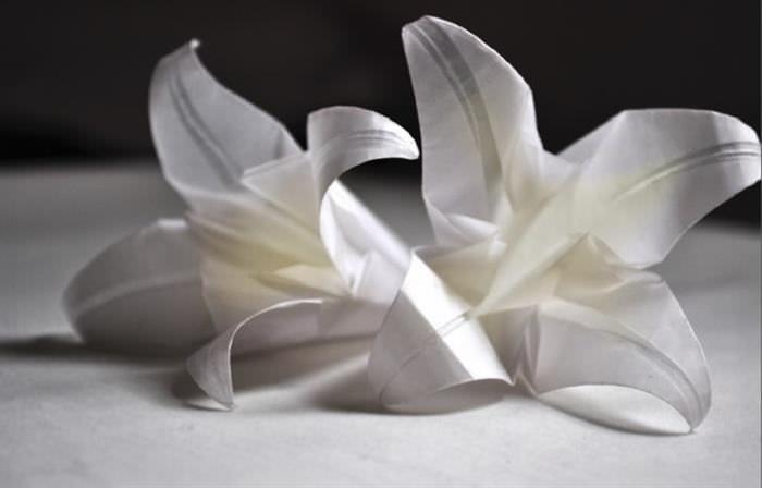 Arte del Origami
