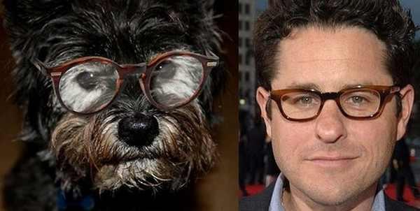 Imágenes de perros parecidos a personas