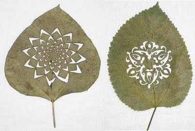 hojas talladas