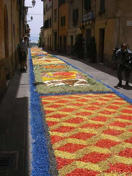 Festival flores