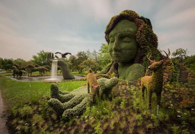 arte en arbustos