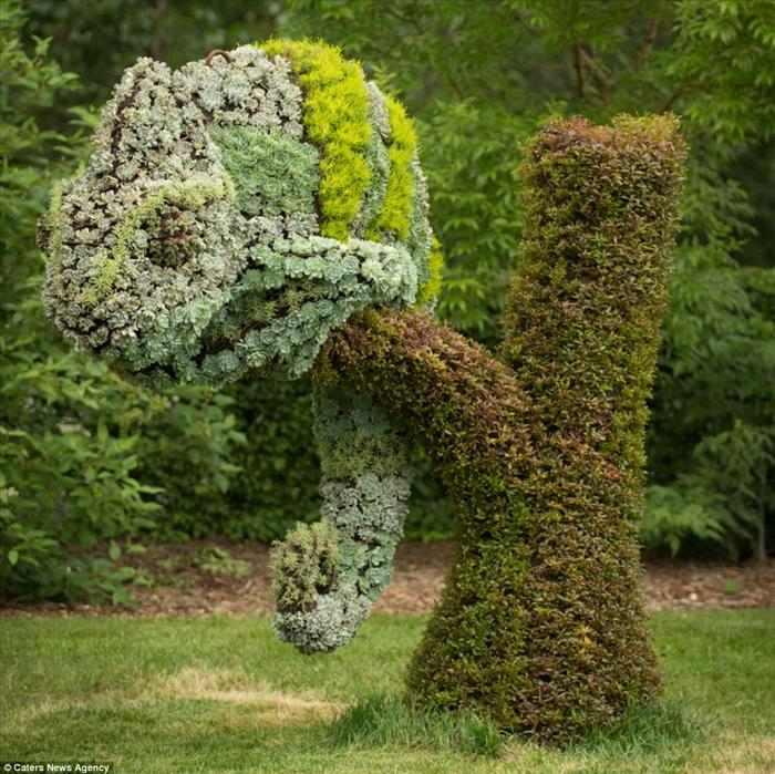Jardinería ornamental