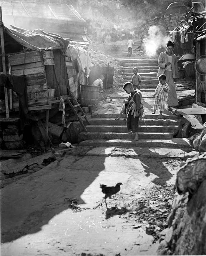 Hong Kong 1950
