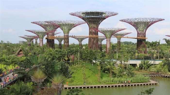 Imagenes Jardin Singapur