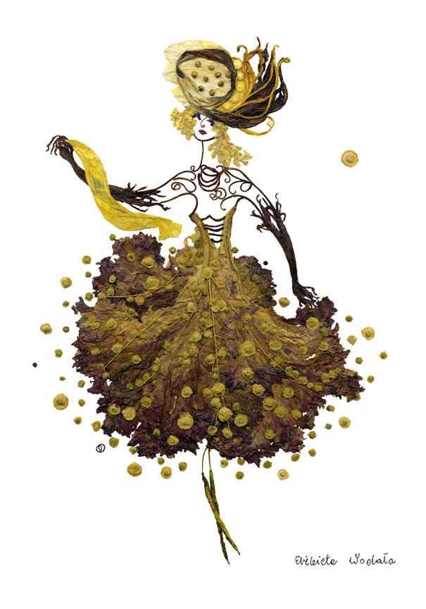 Arte Con Flores Disecadas