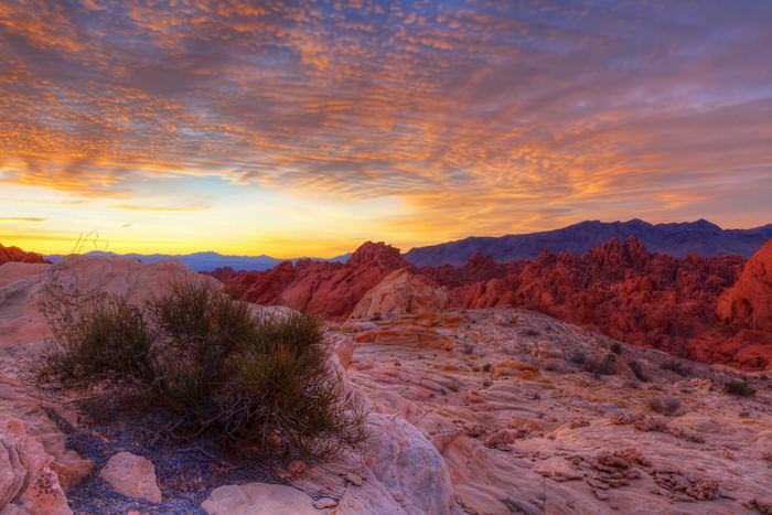 Desierto De Nevada