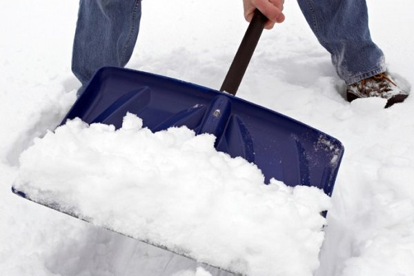 Tips Para Superar El Invierno
