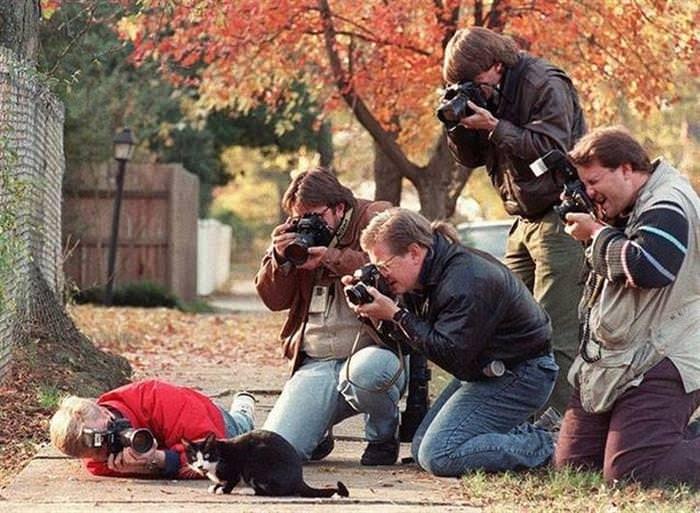 intrepidos fotografos