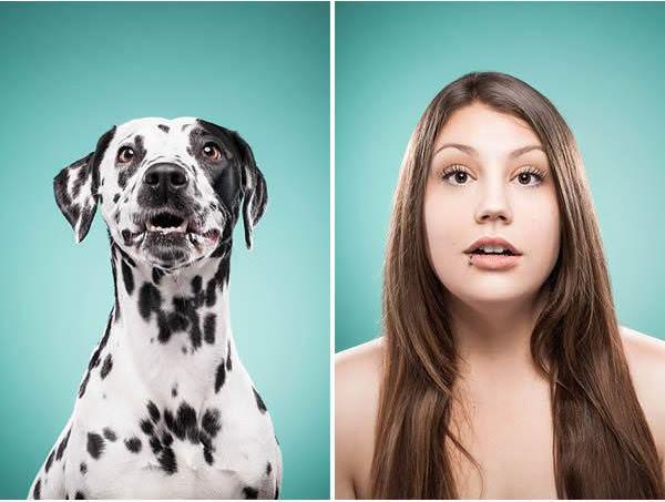 expresiones de perrros en caras humanas