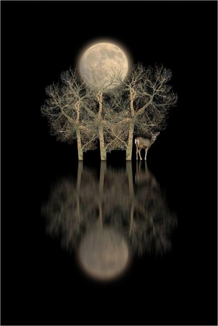 espejo natural