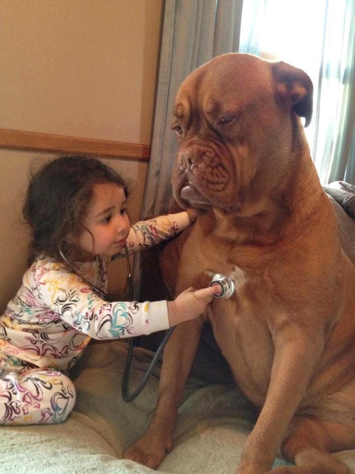 niños mascotas