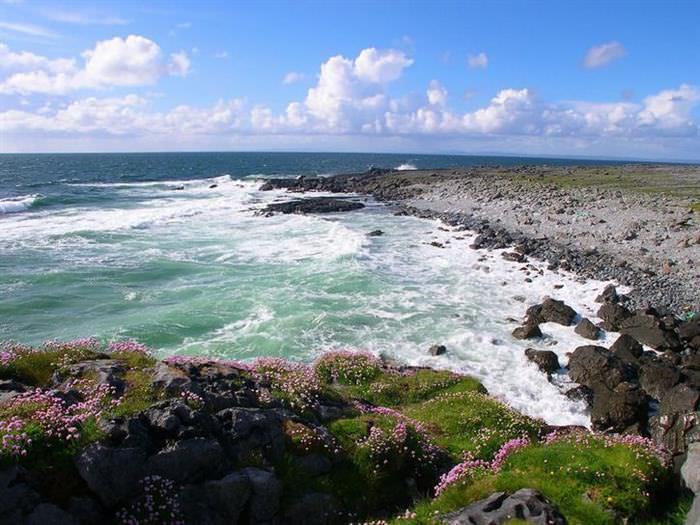Parques de Irlanda