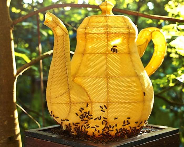 Arte con abejas