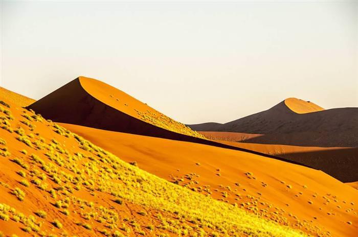 Desiertos