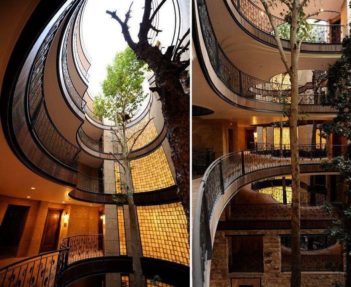 Casas Con Árboles