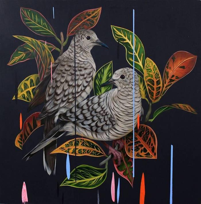 Pinturas aves