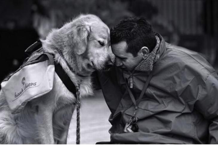 lado más cariñoso de los perros