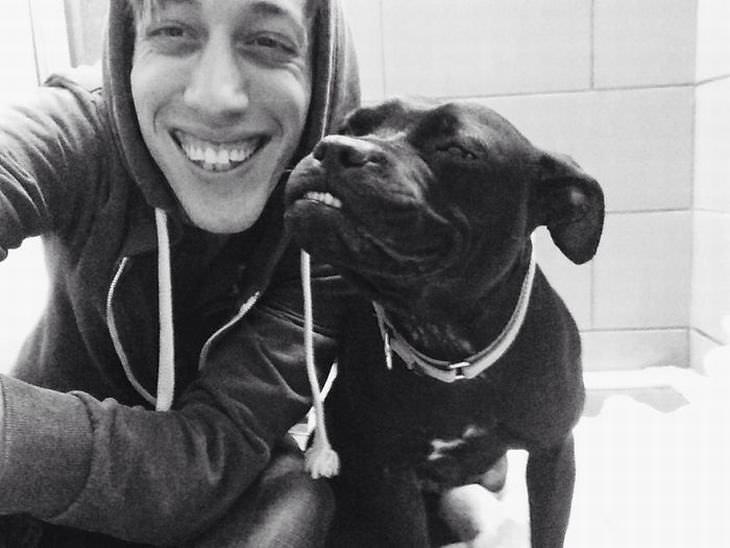 perros sonriendo