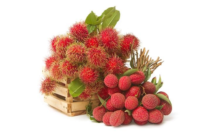 frutas temporada invierno