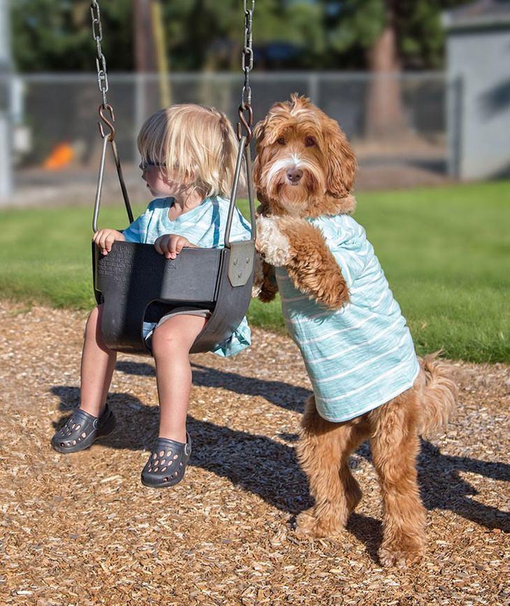 Buddy y Reagan: perro y niño amistad