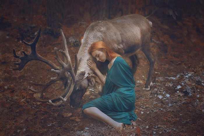 Estas Fotografías Te Harán Sentir Como En Un Cuento De Hadas