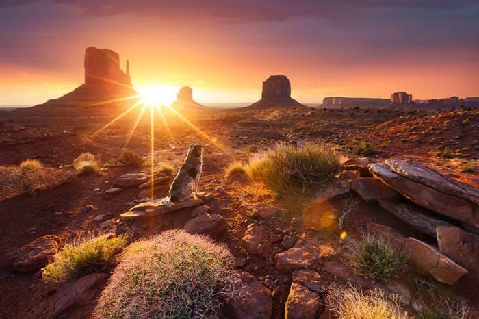 20 Maravillosos Atardeceres En Imágenes