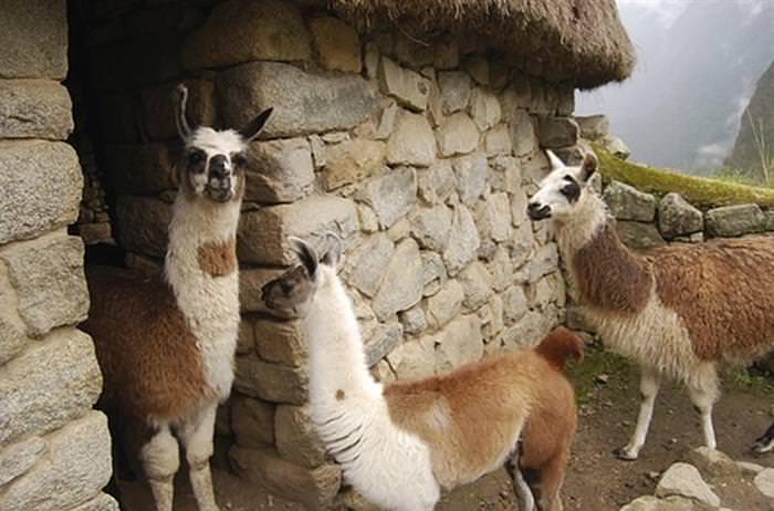 25 Asombrosos Lugares De Sur América Que Debes Conocer