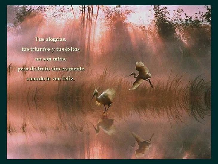 hermoso poema para los amigos