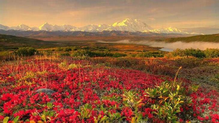 otoño en EEUU