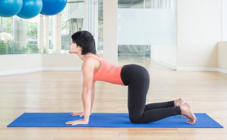 4 ejercicios dolor de espalda