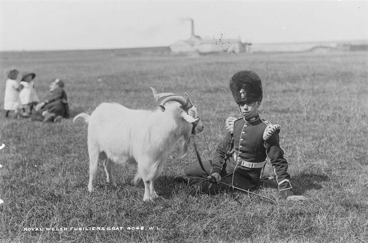 fotos antiguas irlanda