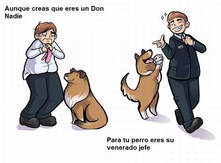 cómo te ve  tu perro