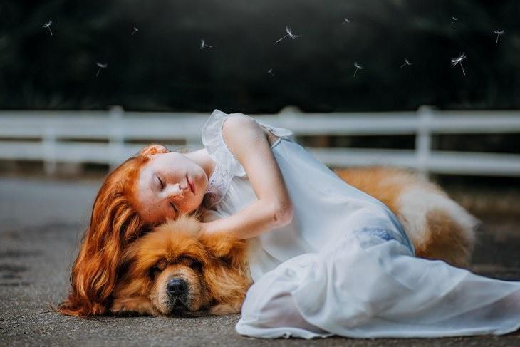 Perros amistosos