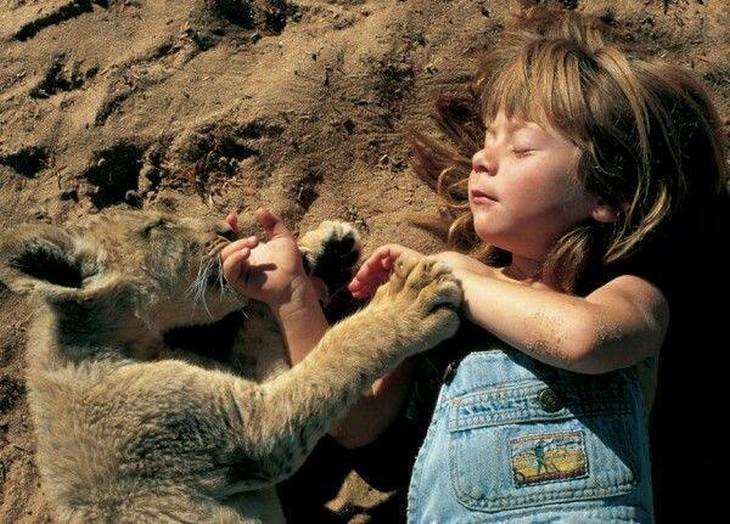 tippi, la niña que habla con animales salvajes