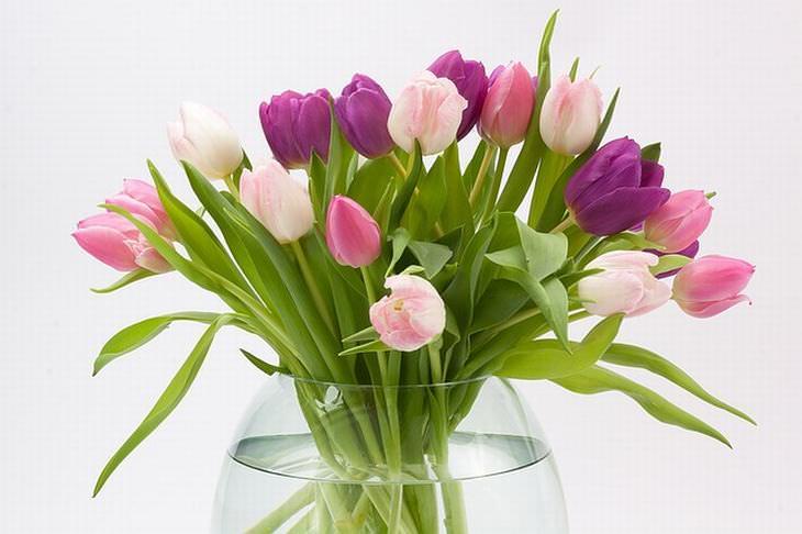 consejos conservar ramos flores
