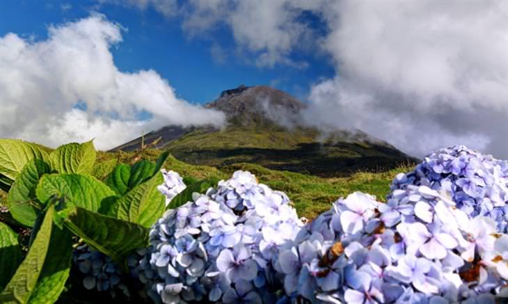 bellas Azores