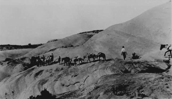 Fotos salvaje oeste