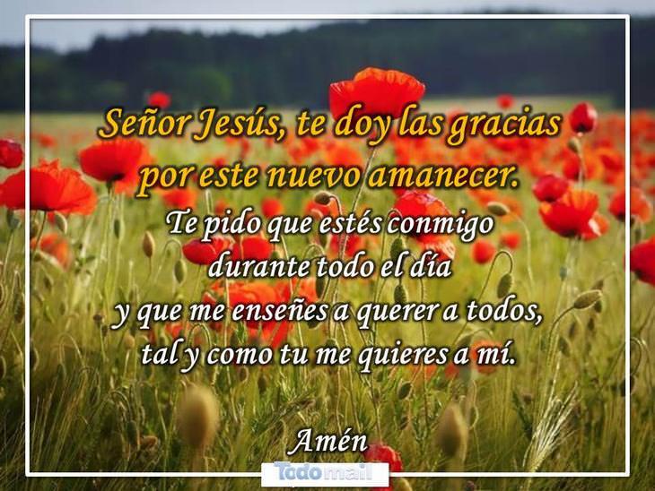 oraciones necesarias