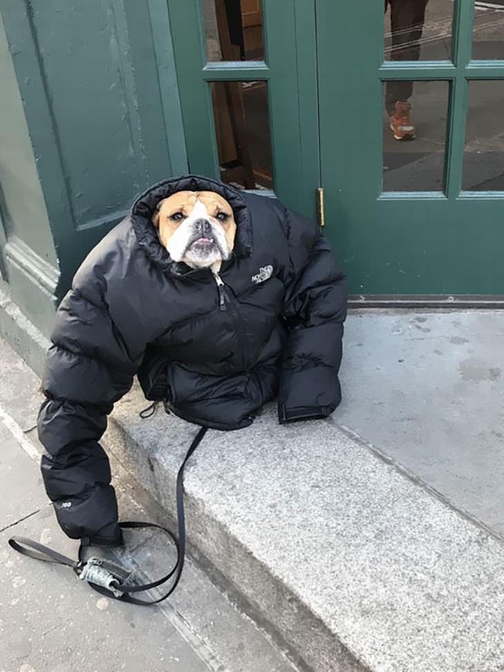 frío en América