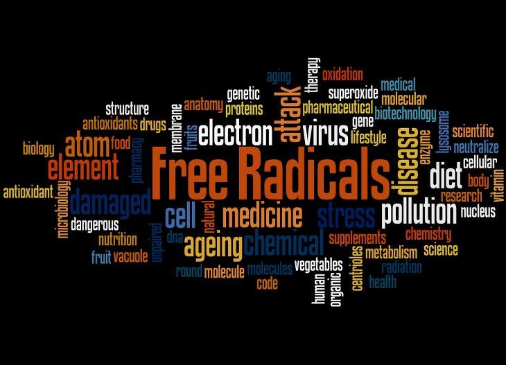 daño radicales libres cuerpo humano
