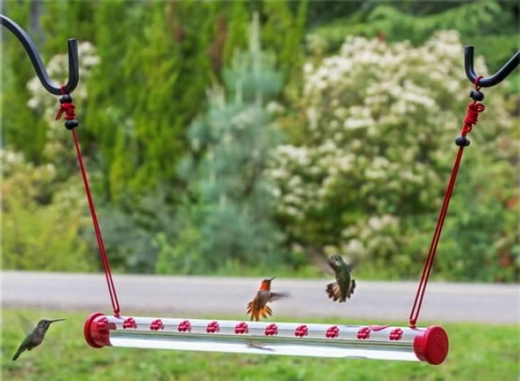 inventos animales felices