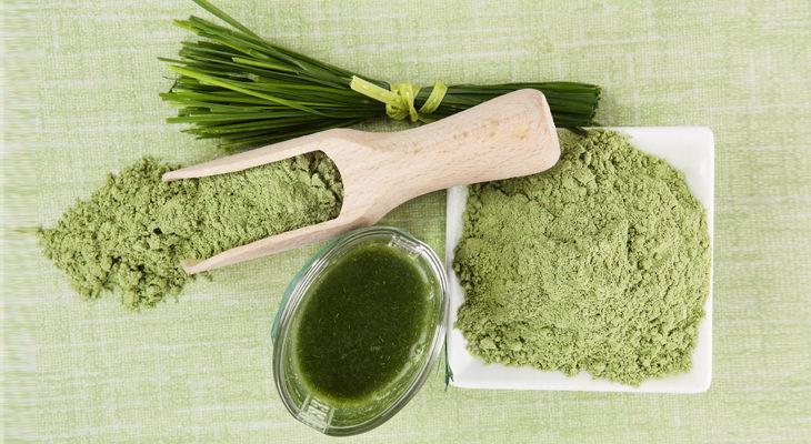 beneficios alga Chlorella Alga