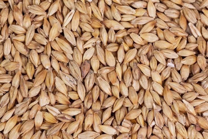 8 granos para perder peso