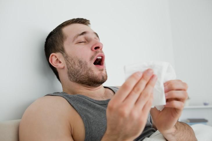Diferencia Entre La Gripe y La Influenza