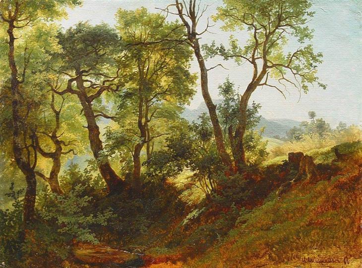 paisajes realistas