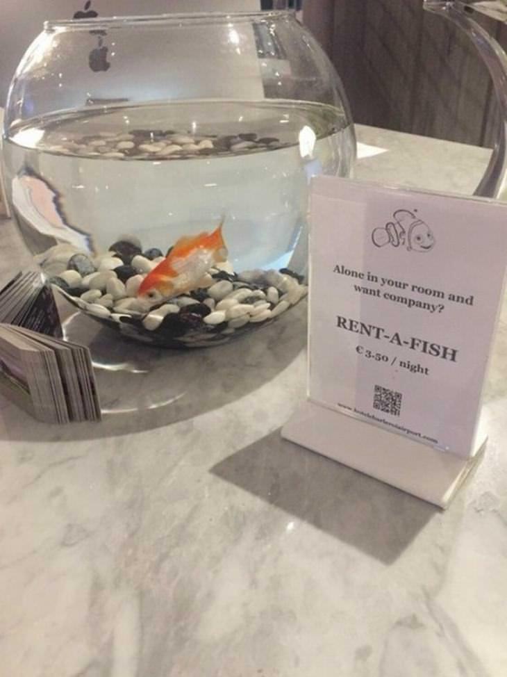 hoteles especiales