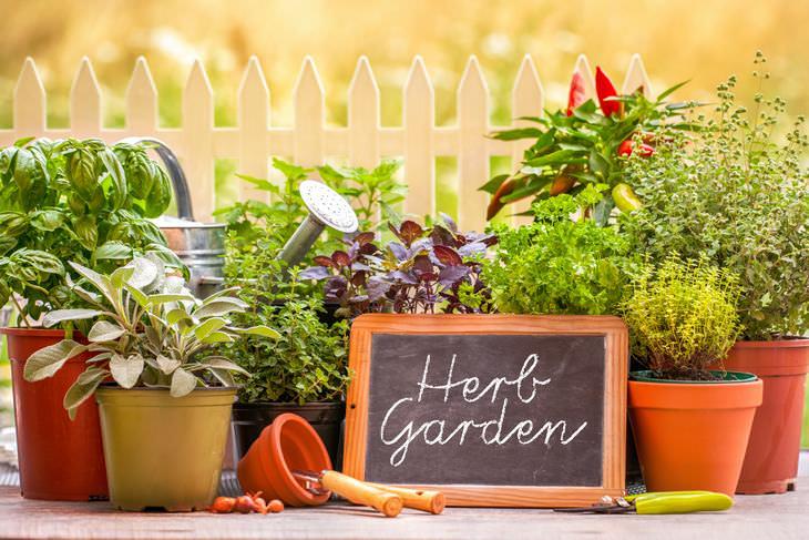 trucos para el jardín